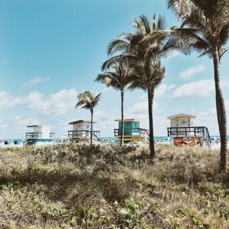 48 Hours in Miami with Kids