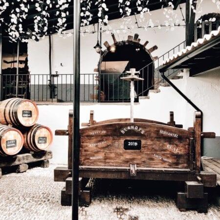 Blandys Wine Madeira Portugal