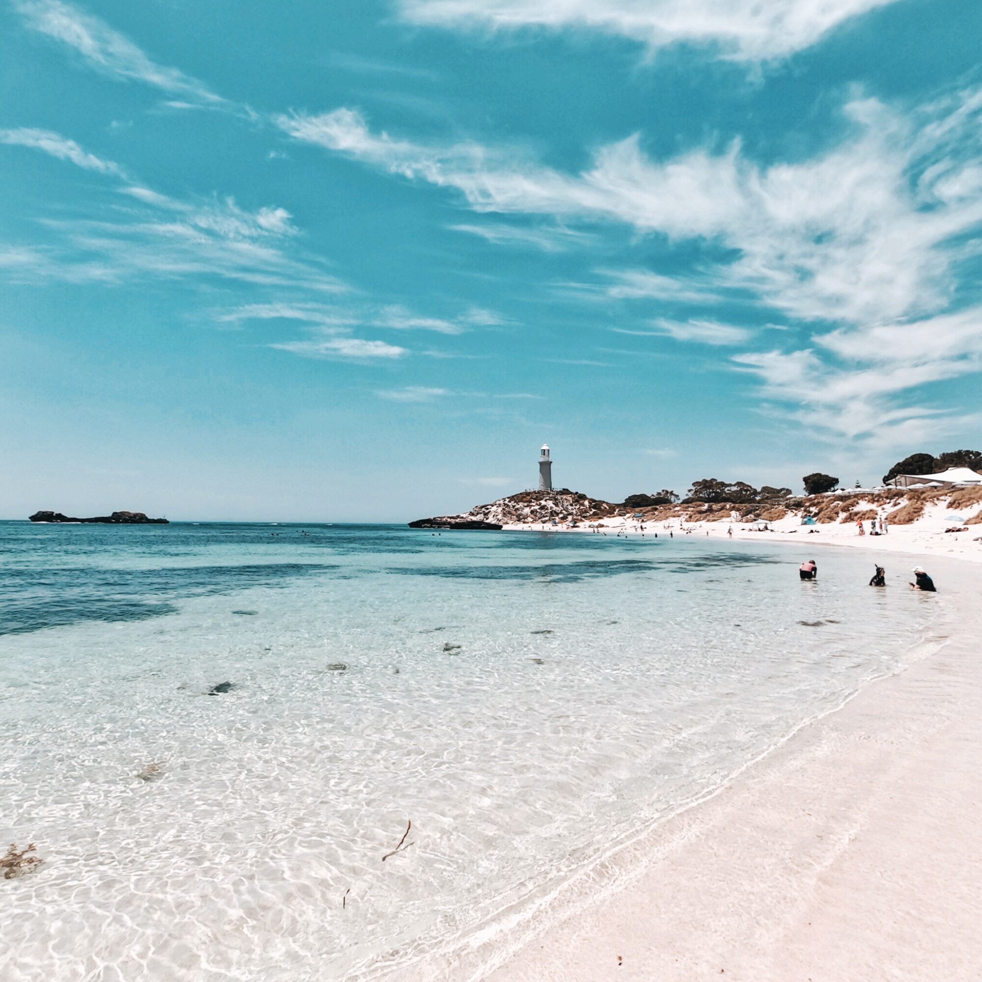 Things To Do On Rottnest Island
