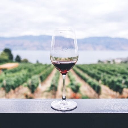 5 Must Drink Wines for Summer